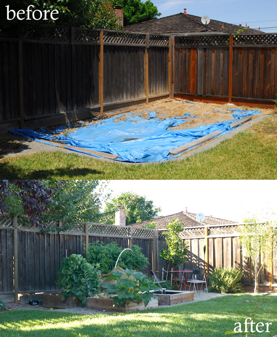 Before &amp; After: Garden