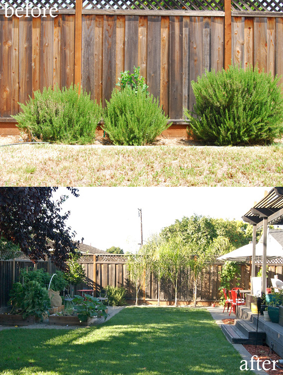Before &amp; After: Yard