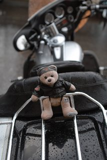 Bear on a Harley