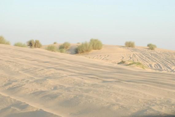 Desert Dunes, Dubai